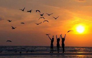 yoga_birds